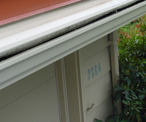 white gutter protection